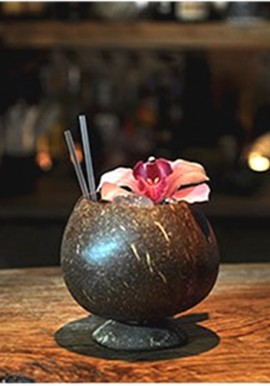 Coconut Cup Lucide