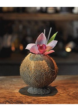 Hairy Coconut Cup / Coupe